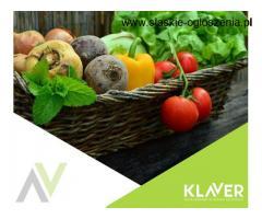 Praca w Holandii- od zaraz! Produkcja, ogrodnictwo, order picker
